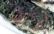 Receta Trucha a la Molinera
